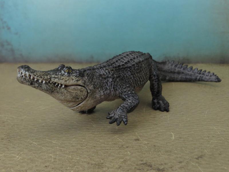 Mojö Alligator- walkaround/comparison by A.R.Garcia IMG_5900ed