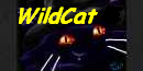 62nd Amateur Series Division 2 Wild_Cat