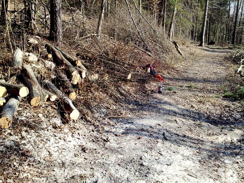 Izrada ogrijevnog drva 25022014730