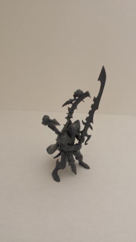 All Plastic Dark Eldar Incubus4