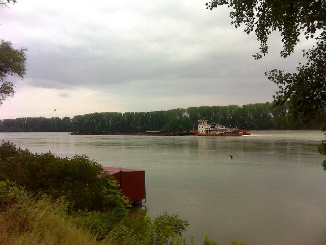 Dravom do Dunava DSC01541