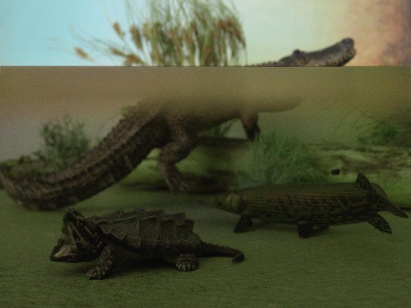 Mojö Alligator- walkaround/comparison by A.R.Garcia IMG_5927ed2
