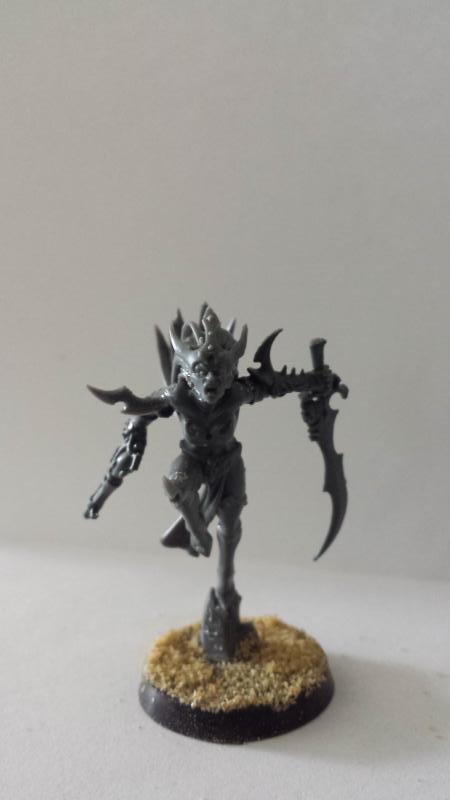 All Plastic Dark Eldar 1_Suckubus