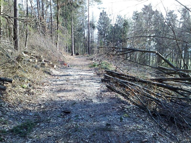 Izrada ogrijevnog drva 25022014729