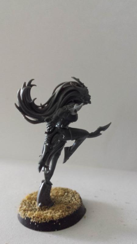 All Plastic Dark Eldar 1_Suckubus2