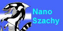 66th Amateur Series Division 6 Nano_Szachy