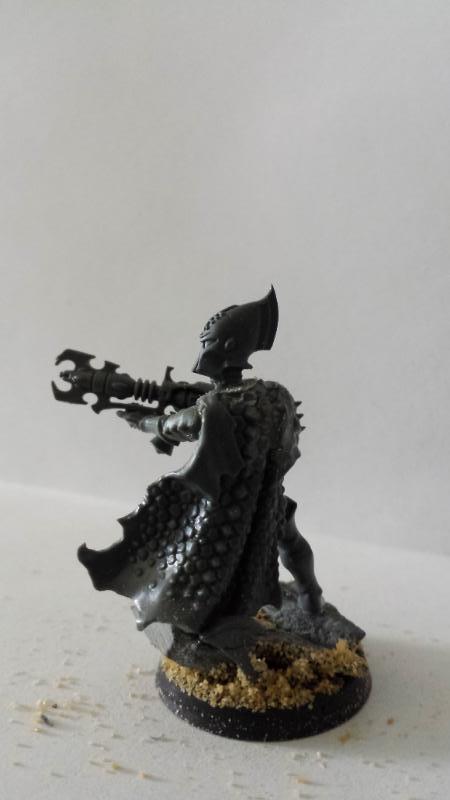 All Plastic Dark Eldar Trueborn7