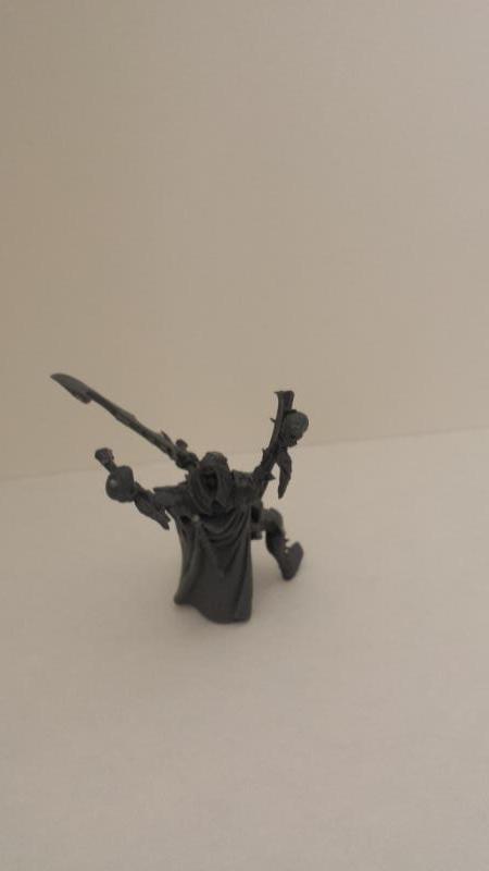 All Plastic Dark Eldar Incubus3