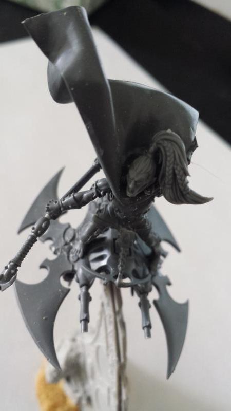 All Plastic Dark Eldar Baron