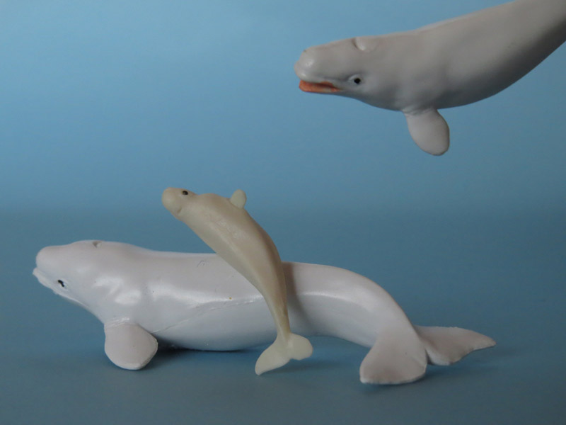 Battat Terra Beluga Whale: walkaround and comparison with Safari Ltd IMG_6756ed