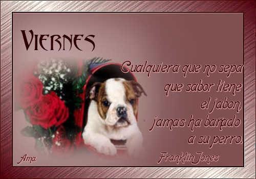 Vicente, mi Amigo Fiel Viernes