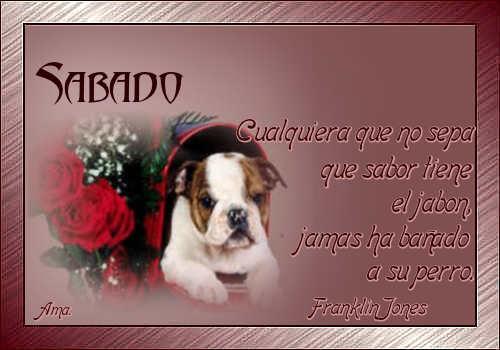 Vicente, mi Amigo Fiel SABADO