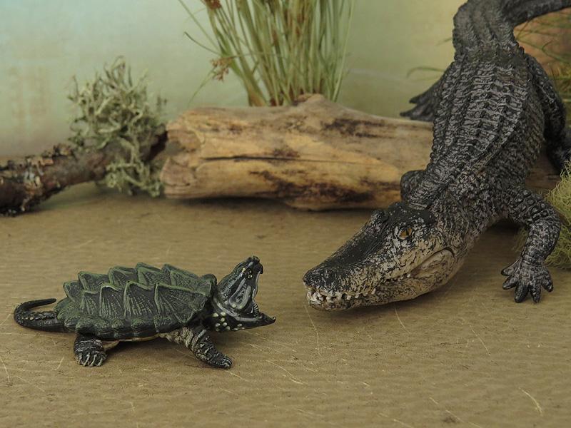 Mojö Alligator- walkaround/comparison by A.R.Garcia IMG_5940ed