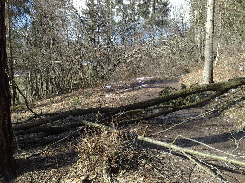 Izrada ogrijevnog drva 14022014715