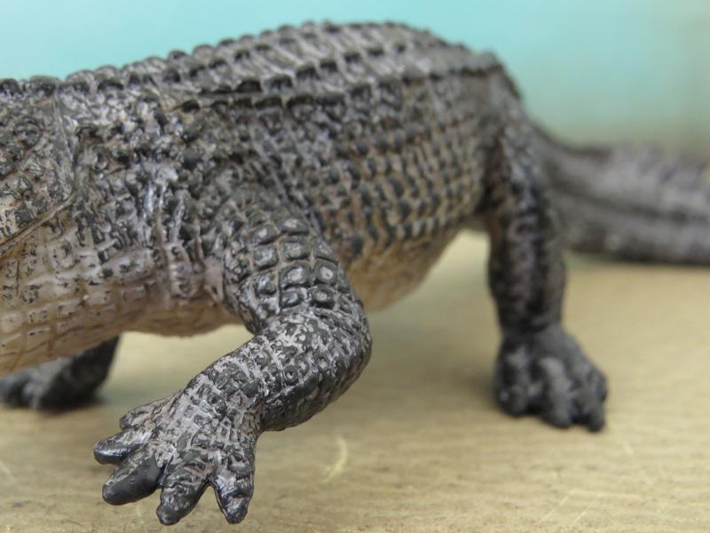 Mojö Alligator- walkaround/comparison by A.R.Garcia IMG_5911ed