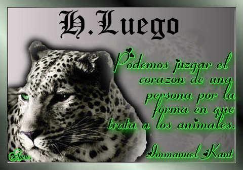 Tigre con Frase Hasta_luego