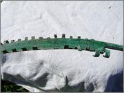 bronasti pas ( bronze belt Bronze_G_rtel_23