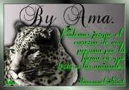 Tigre con Frase Image
