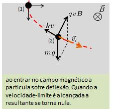 Fuvest- campo magnético  Image