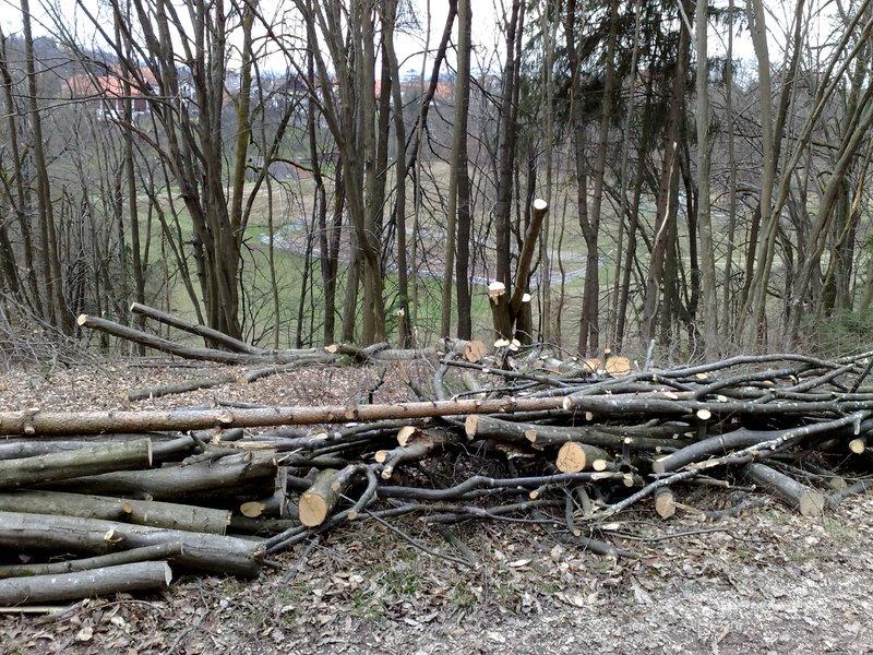Izrada ogrijevnog drva 27022014733