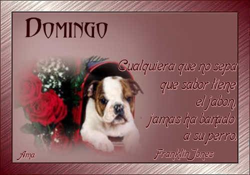 Vicente, mi Amigo Fiel Domingo