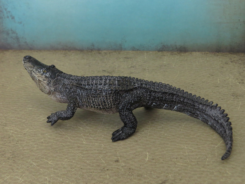 Mojö Alligator- walkaround/comparison by A.R.Garcia IMG_5899ed
