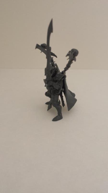 All Plastic Dark Eldar Incubus5