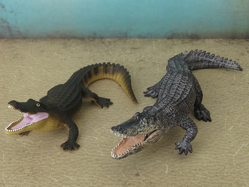 Mojö Alligator- walkaround/comparison by A.R.Garcia IMG_5916ed
