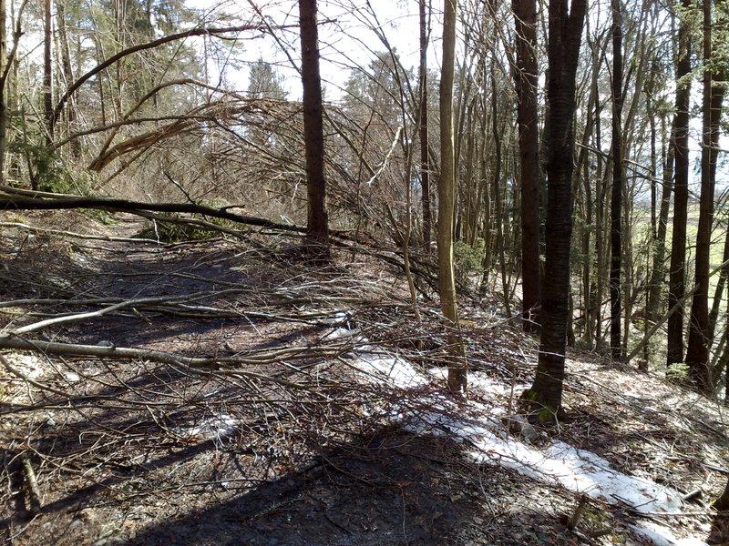 Izrada ogrijevnog drva 14022014716