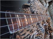 Fender Jazz Bass 77 DSCN2206