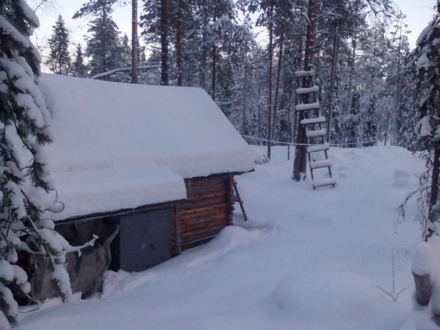 Не Аляска,но! IMG_20150104_131835