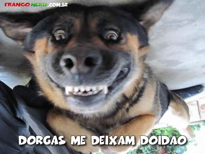 Dinheiro Dorgas_manu