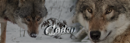 A new beginning. {Tyvr} Caden_Os