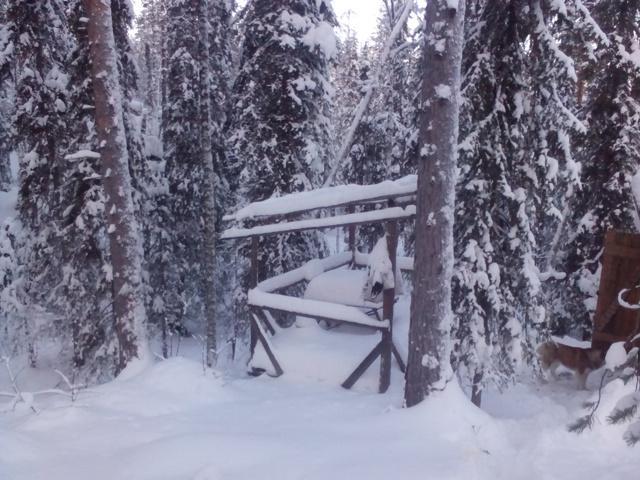 Не Аляска,но! IMG_20150104_131843