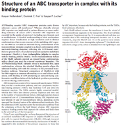 ABC transporters Structure_of_an_ABC_transporter