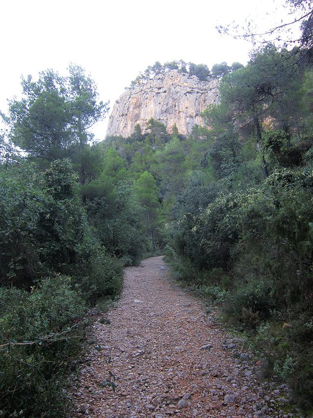 ALFAFARA-COVA DE BOLUMINI....ruta motosenderista Bolu4