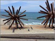 A trip to Costa alegre and Puerto Vallarta. IMG_20160402_124422