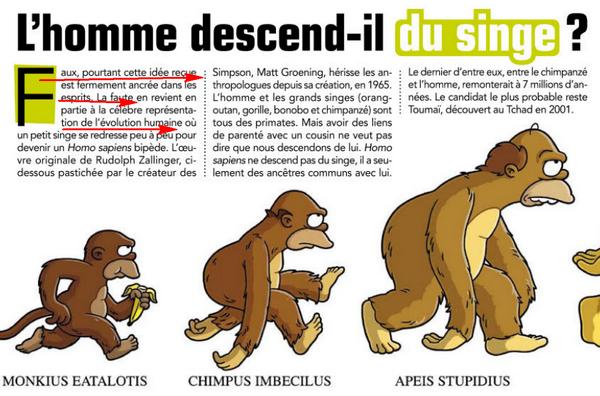 L'Homme descend t'ilm des singes ?? Image