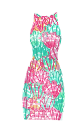 Lilly Pulitzer Inspired 1455500364744