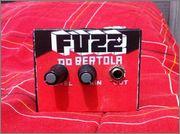 Bertola's Fuzz Image