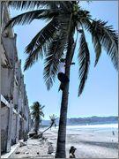 A trip to Costa alegre and Puerto Vallarta. IMG_20160401_114056