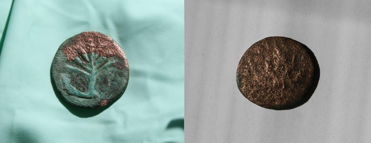 AE25 de la Rebelión de Bar Kojba. Judea. 132-135 d.C. Anverso_y_reverso