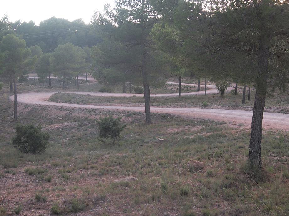 EL RECONCO,Biar + COVA NEGRA (ruta motosenderista) Biar35