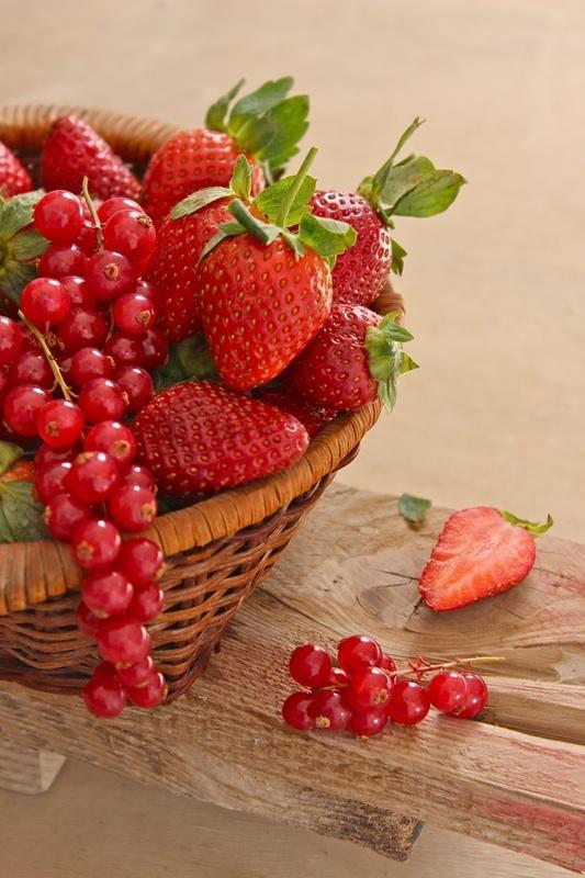 Volim voće - Page 6 F697a5e62fd561c4bbd07693be033436