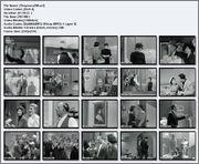 ΣΤΟΥΡΝAΡΑ 288 (1959) Stoyrnara288_scr