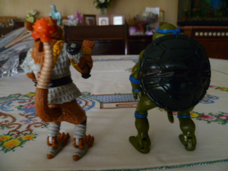 Cerco Ninja Turtles loose 3_004
