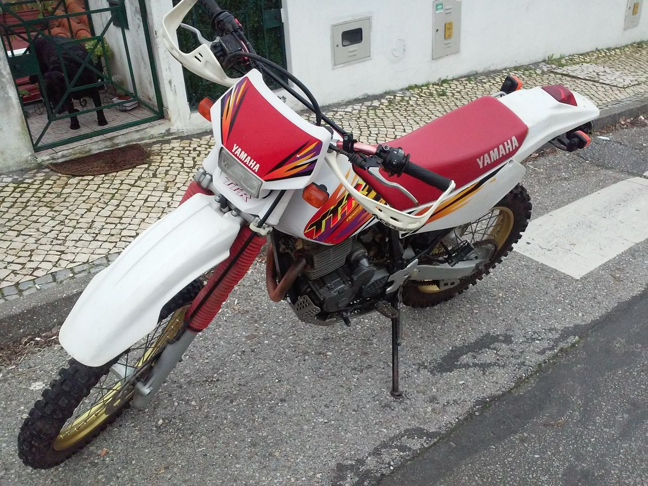 Yamaha TTR 250  96 20160130_164748