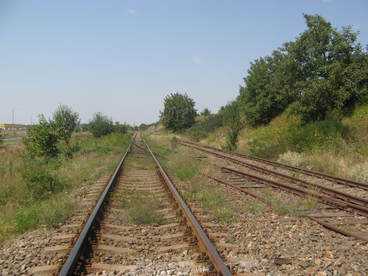 Calea ferată directă Oradea Vest - Episcopia Bihor IMG_0055