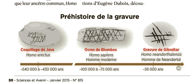 Homo Erectus: 1ér Graveur de l'Humanité Image
