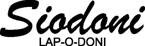 Construção de uma Lap Steel Lap_o_doni